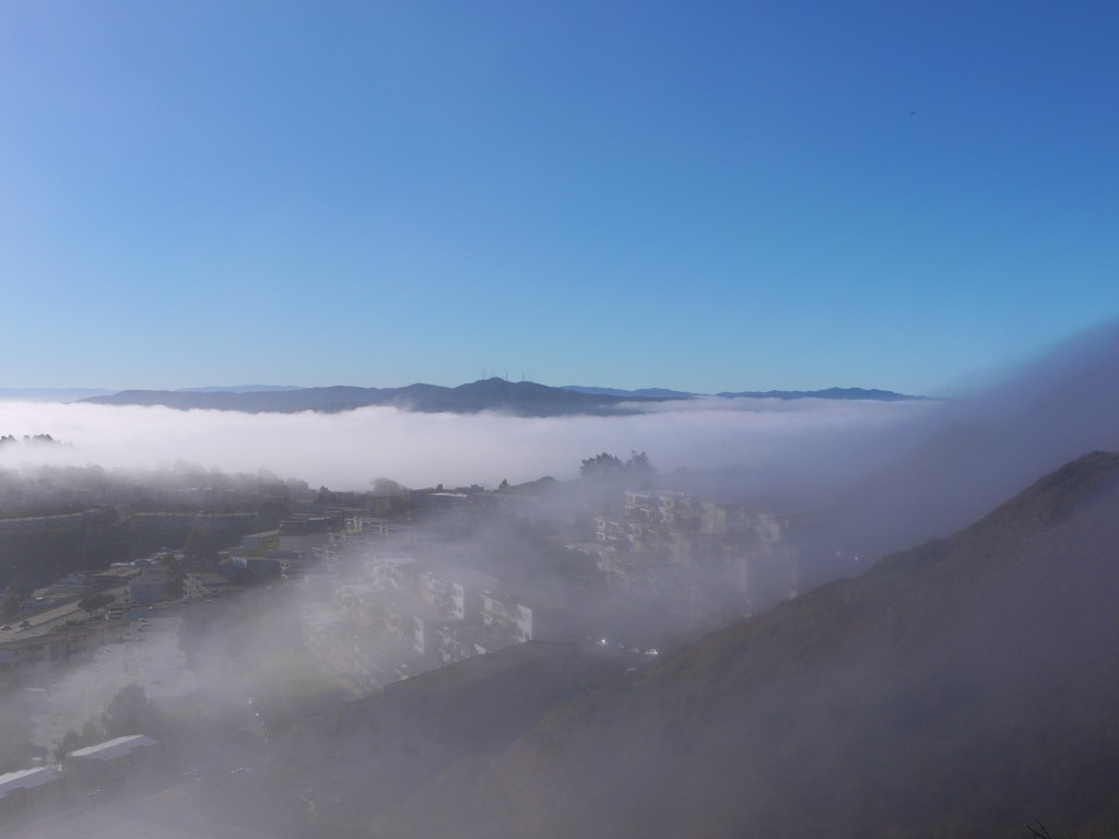 Looking south from Twin Peaks, fog blanketing the city.
